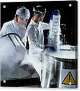 Researchers Handling Trays Of Frozen Bacteria Acrylic Print