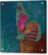 Reve De Papillon - S04bt02 Acrylic Print by Variance Collections