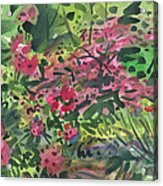 Rhododendrons And Azaleas Acrylic Print