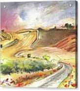Ribera Del Duero In Spain 11 Acrylic Print