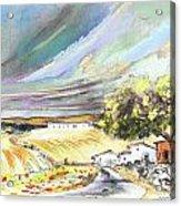 Ribera Del Duero In Spain 13 Acrylic Print