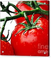 Rich Red Tomatoes Acrylic Print