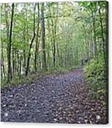 Richland Mine Trail Acrylic Print