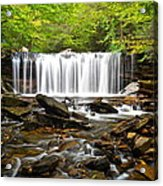 Ricketts Glen Waterfall Oneida Acrylic Print