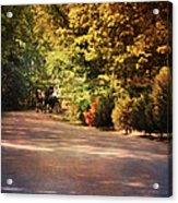Ride At Timbers Farm Acrylic Print by Jai Johnson