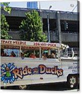 Ride The Ducks Acrylic Print