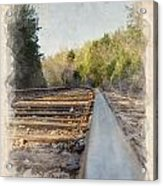 Riding The Rail II Acrylic Print