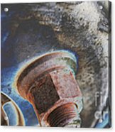 Rim Closeup Acrylic Print