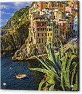 Rio Maggiore Cinque Terre Italy Acrylic Print