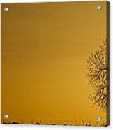 Rising Sun Panorama Acrylic Print