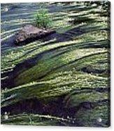 River Bandon, County Cork, Ireland Acrylic Print