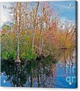 River Bend Acrylic Print