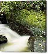 River Flowing Through A Forest, Torc Acrylic Print