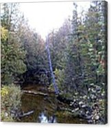 River In The Woods Acrylic Print by Ted Kitchen