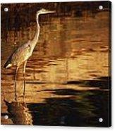 River Liffey, County Dublin, Ireland Acrylic Print