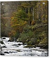River Lyn In Autumn Acrylic Print