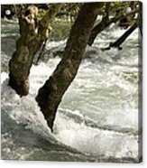River Manavgat In Flood Acrylic Print by Bob Gibbons