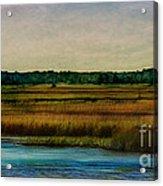 River Of Grass Acrylic Print