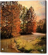 River Of Hope Acrylic Print by Jai Johnson