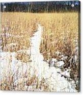 River Of Snow Acrylic Print