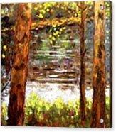 River Trees Acrylic Print by John  Nolan