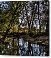 Rivers Edge Acrylic Print by Dan Crosby
