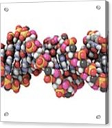 Rna-editing Enzyme Combined With Rna Acrylic Print