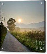 Road In Sunrise Acrylic Print