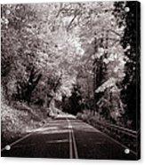 Road Through Autumn - Black And White Acrylic Print