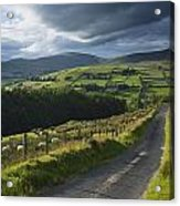 Road Through Glenelly Valley, County Acrylic Print