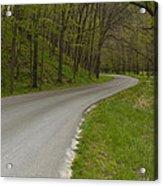 Road Thru Woods Spring 1 Acrylic Print