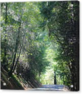 Road To Apple Hill Acrylic Print