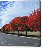 Road To Fall Colors Acrylic Print by Richard Leon