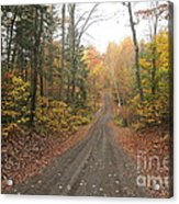 Roads Less Traveled Acrylic Print