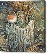 Robin Christmas Card Acrylic Print
