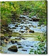 Rock Creek Bed Acrylic Print