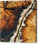 Rock Detail, Killarney Provincial Park Acrylic Print