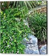 Rock Garden Beauty Acrylic Print