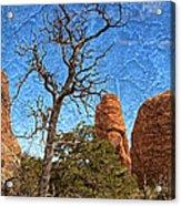 Rock Garden Skeleton Arches National Park Acrylic Print