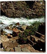 Rock Rush Glen Alpine Creek Acrylic Print