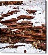 Rock Sandwich With Snow Icing Acrylic Print