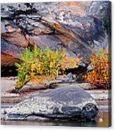 Rock Shrub And Bluff At Cumberland Falls State Park Acrylic Print