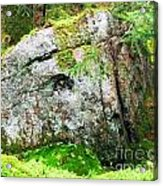 Rock Spirits Keeping Secrets Acrylic Print