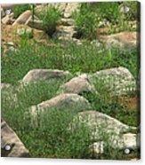 Rocks And Grass At Amidon Conservation Area Missouri Acrylic Print