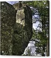 Rocks And Trees Acrylic Print