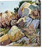 Rocks And Weeds Acrylic Print