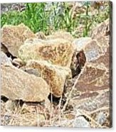 Rocks Bonham State Park Tx Acrylic Print