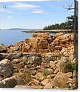 Rocky Coast Of Maine Acrylic Print