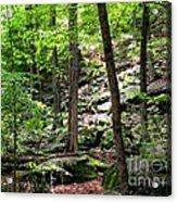Rocky Forest Of Chatfield Acrylic Print