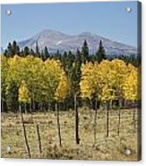 Rocky Mountain High Country Autumn Fall Foliage Scenic View Acrylic Print